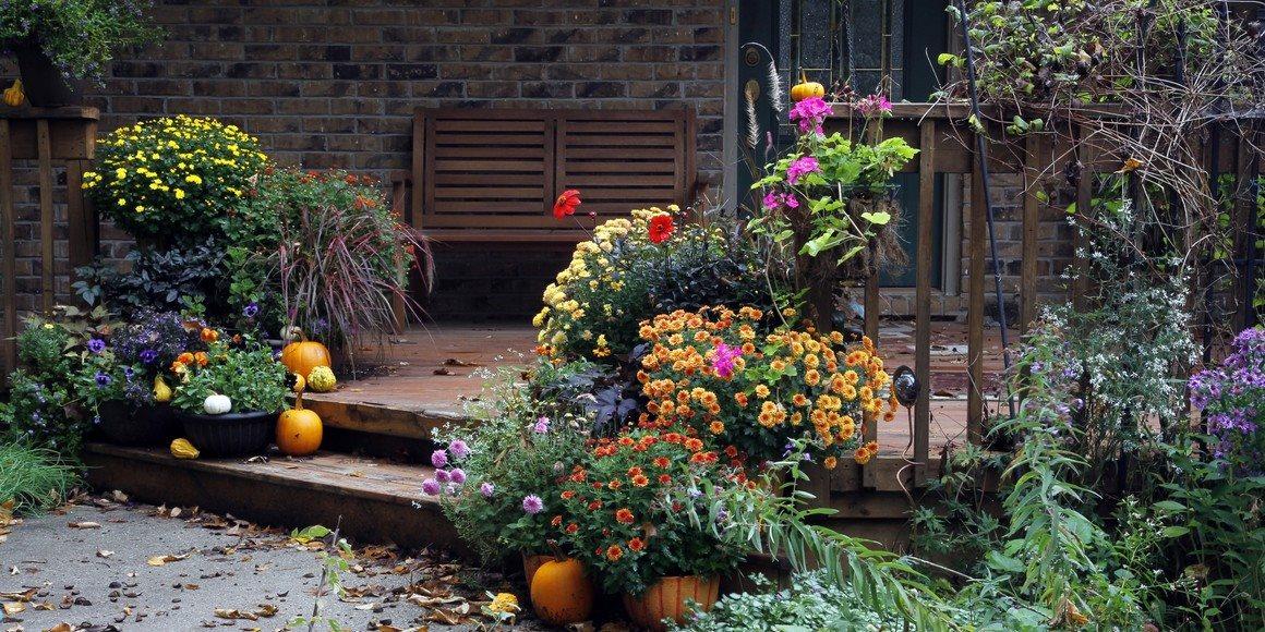 Září na zahradě