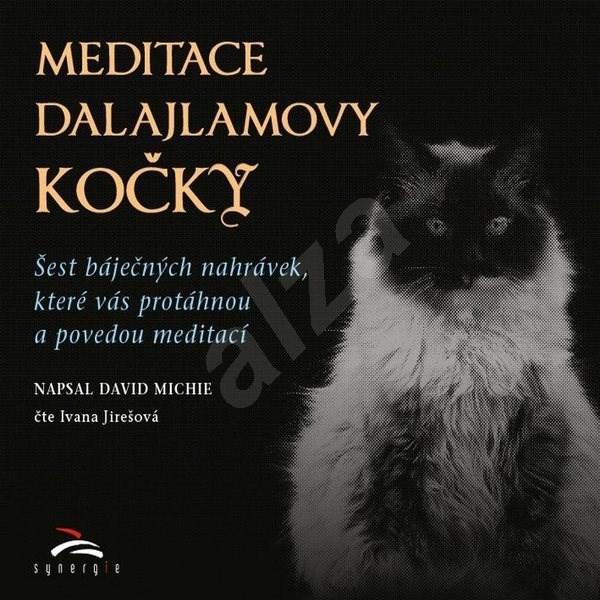 Meditace dalajlamovy kočky - David Michie