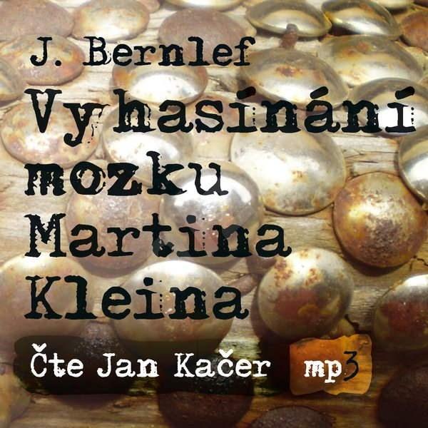 Vyhasínání mozku Martina Kleina - J. Berlef