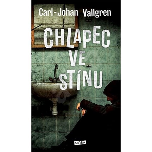 Chlapec ve stínu - Carl-Johan Vallgren