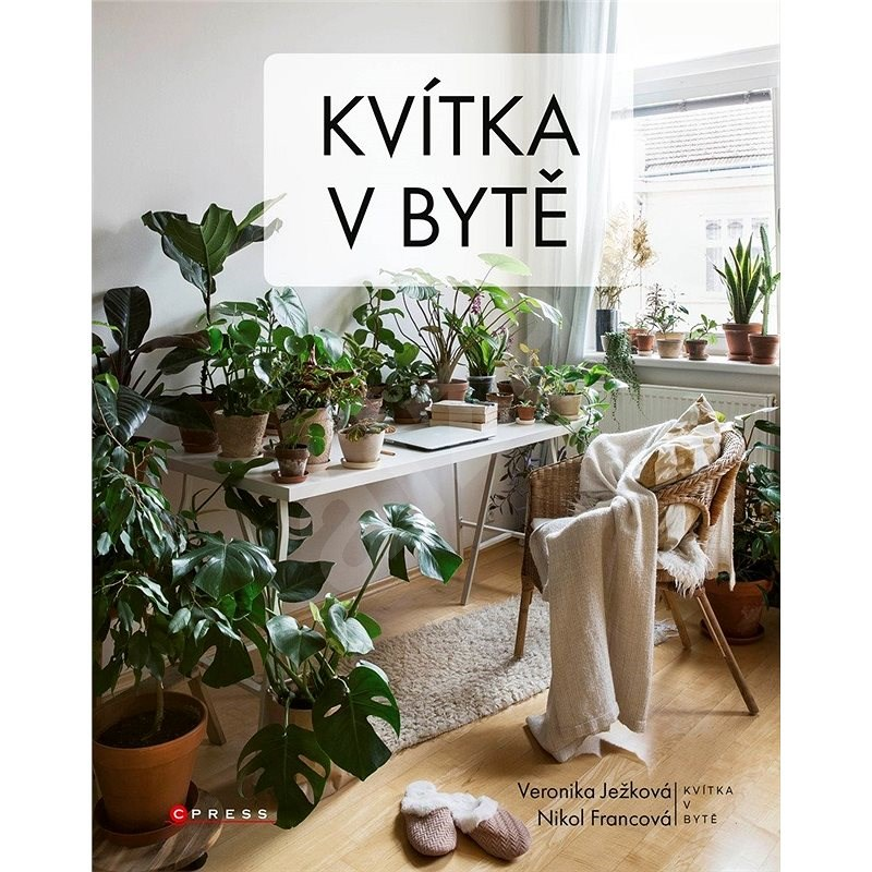 Kvítka v bytě - Team of authors