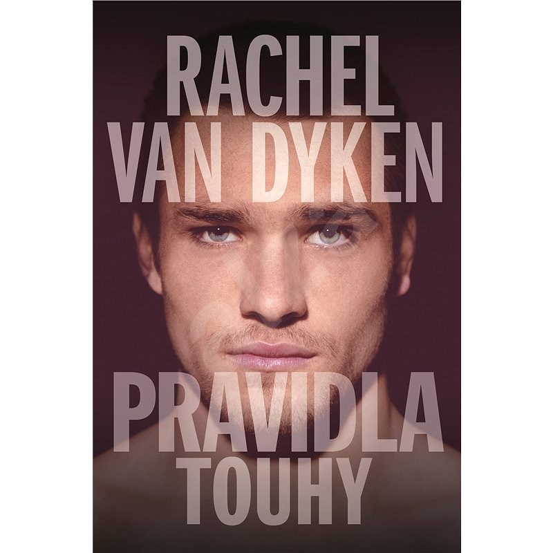 Pravidla touhy - Rachel Van Dyken