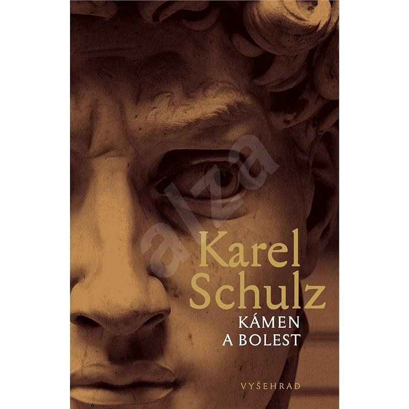 Kámen a bolest - Karel Schulz