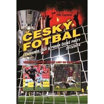 Český fotbal Gambrinus liga a Pohár České pošty: Všechny sezony České ligy od roku 1993 - Petr Zapletal