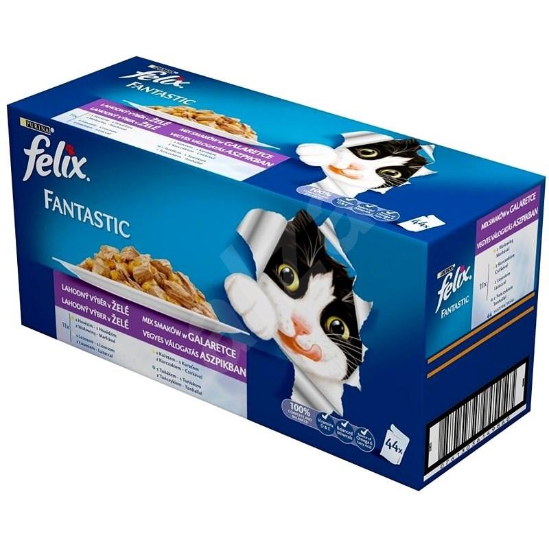 Felix fantastic (44 × 100 g) - výběr mix v želé - Kapsička pro kočky