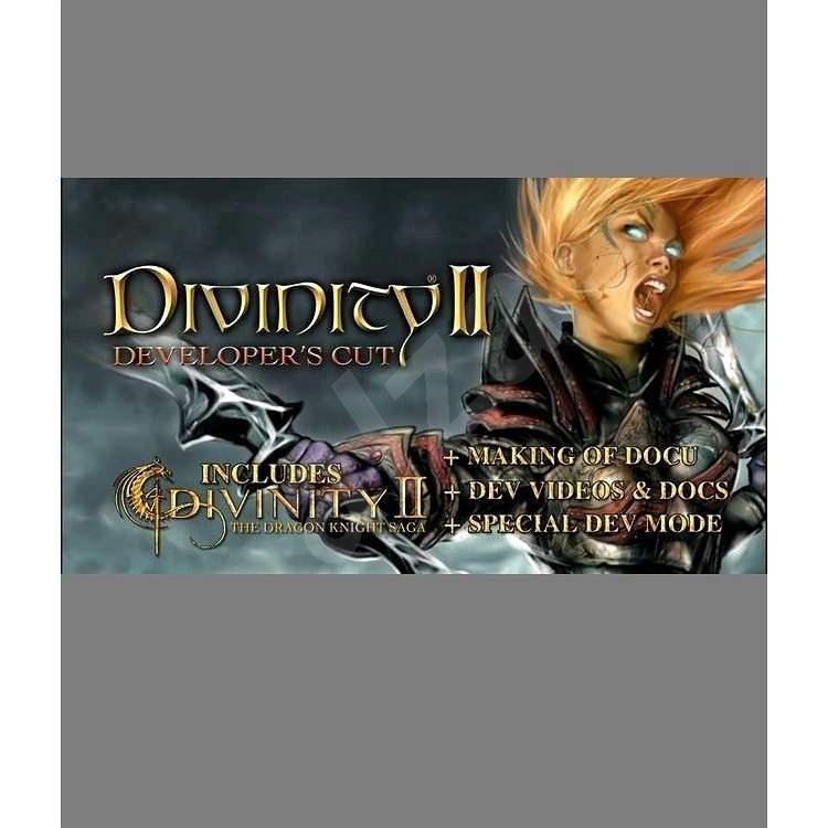 Divinity II Developer's Cut - Hra na PC