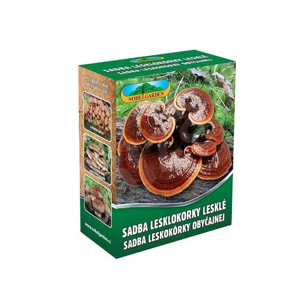 Lesklokorka lesklá 250ml - Dřevokazné houby
