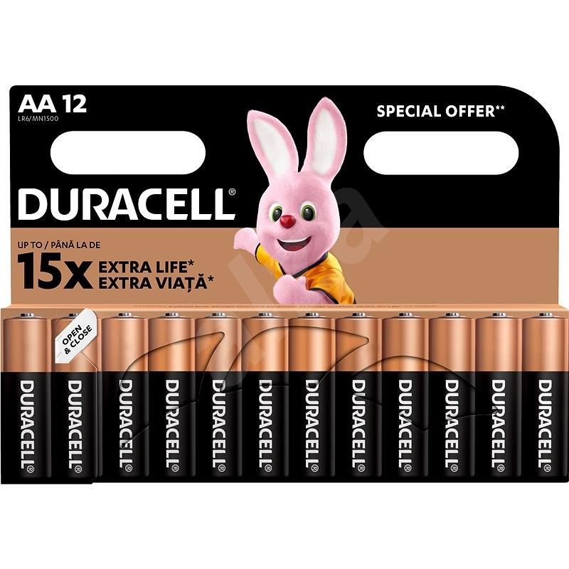 Duracell Basic AA 12 ks - Jednorázová baterie