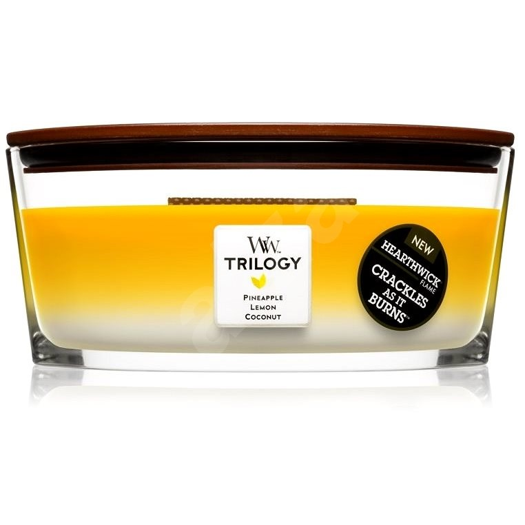 WOODWICK Trilogy Elipsa Fruits Of Summer 453.6g - Candle