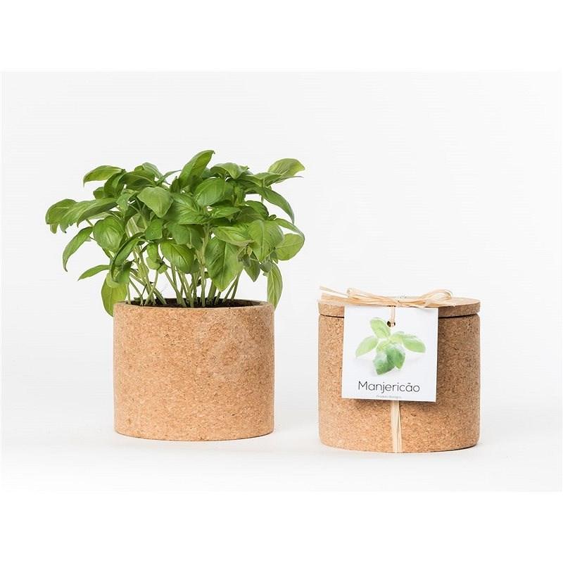 Grow Cork Pot - Pažitka - Květináč