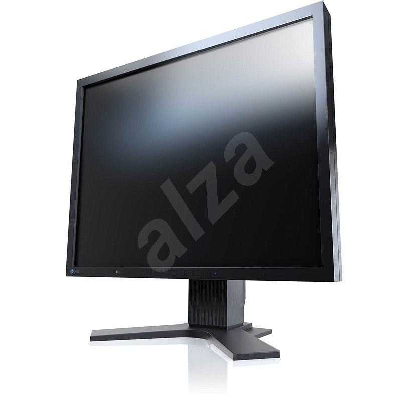 "21"" EIZO FlexScan S2133-BK - LCD monitor"
