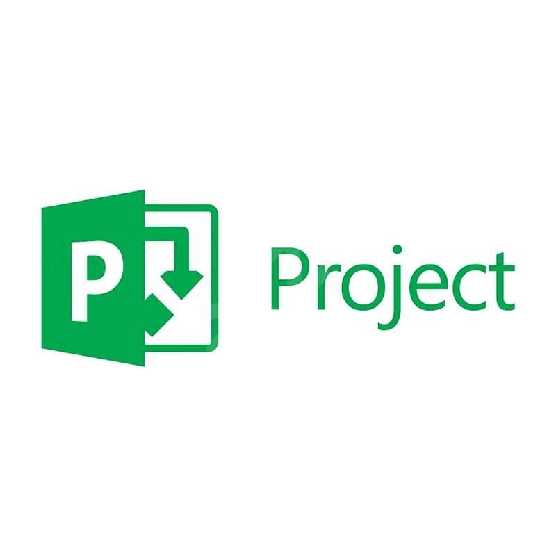 Microsoft Project Professional 2016 ENG - Kancelářský software