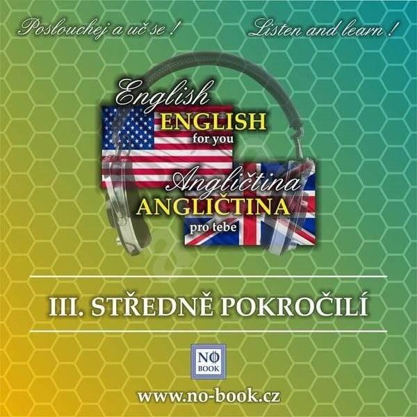 Angličtina pro tebe 3 - Středně pokročilí - Ludvík Richard