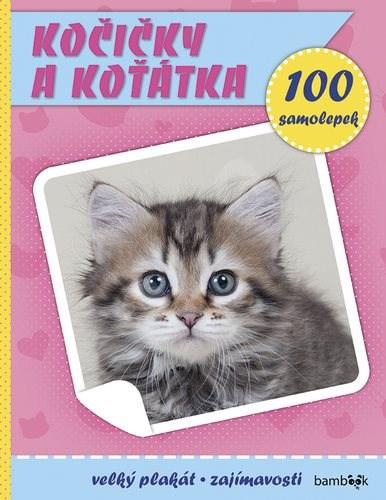 Kočičky a koťátka: Plakát a 100 samolepek -