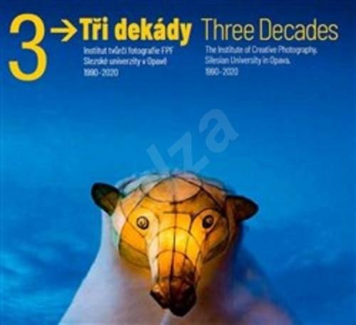Tři dekády / Three Decades - Vladimír Birgus