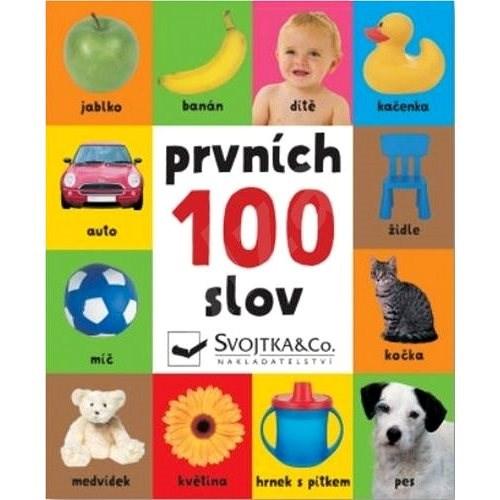 Prvních 100 slov -