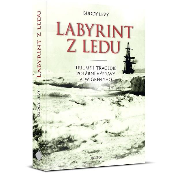 Labyrint z ledu - Buddy Levy