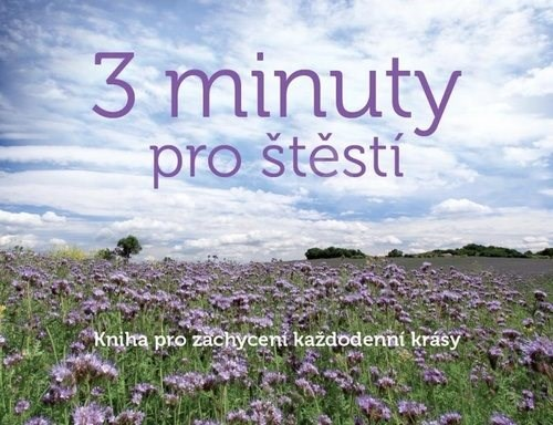 3 minuty pro štěstí: Kniha pro zachycení každodenní krásy -