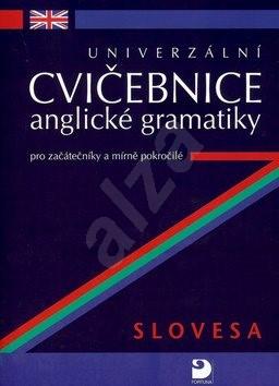 Univerzální cvičebnice anglické gramatiky: Slovesa pro začátečníky a mírně pokročilé - Petr Kácha
