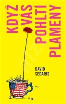 Když vás pohltí plameny - David Sedaris