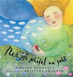 Než jsi přišel na svět - Howard Schwartz