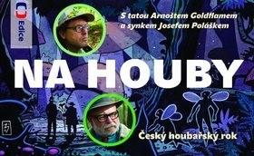 Na houby: S tatou Arnoštem Goldflamem a synkem Josefem Poláškem - Pavel Jirásek; Jiří Zimčík