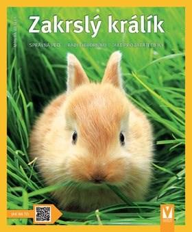 Zakrslý králík -