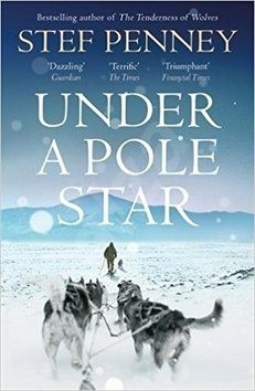 Under a Pole Star - Stef Penney