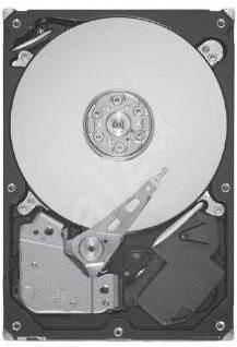 Seagate Barracuda 7200.12 250GB s Advanced Format - Pevný disk