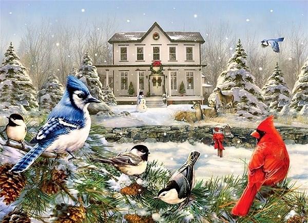 Cobble Hill Puzzle Ptáci z venkova 1000 dílků - Puzzle
