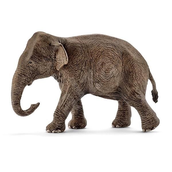 Schleich 14753 Asijský slon samice - Figurka