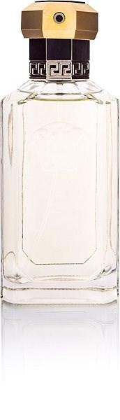VERSACE Dreamer EdT 100 ml - Toaletní voda pánská