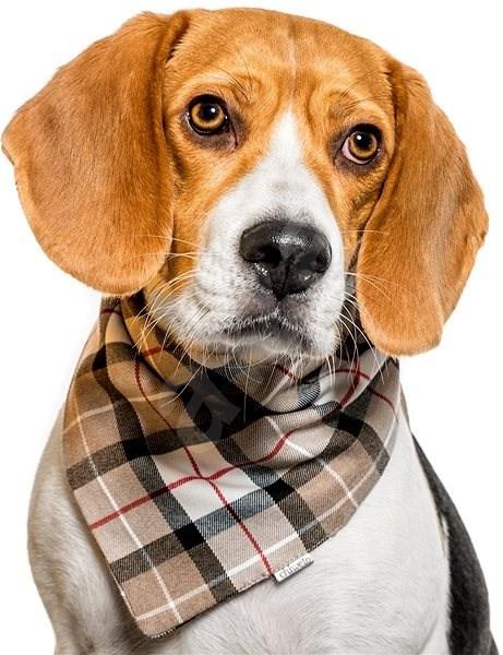 Chiweto Deluxe Jessy M, béžová kostka - Šátek pro psy