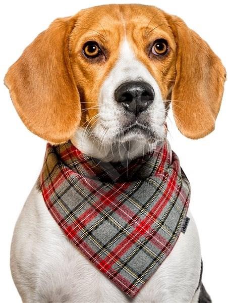 Chiweto Deluxe Bruno S, šedočervená kostka - Šátek pro psy