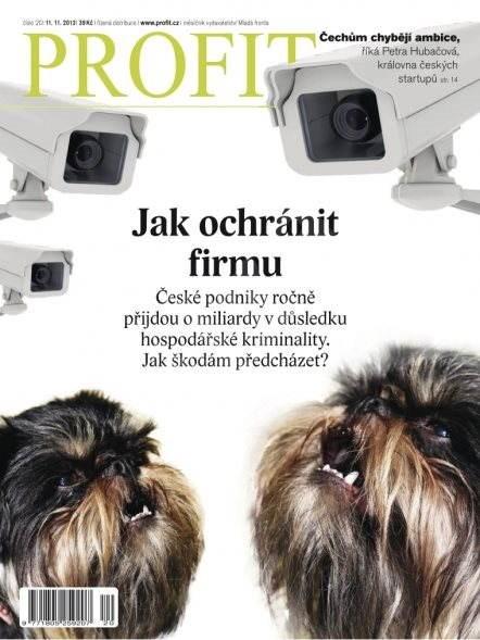 Profit - 20/2013 - Elektronický časopis