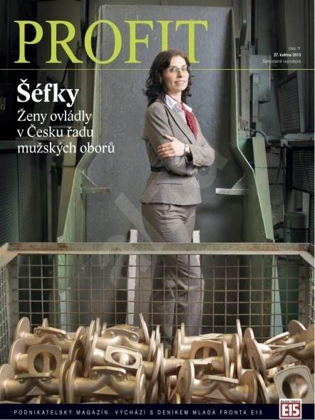 Profit - 11/2013 - Digital Magazine