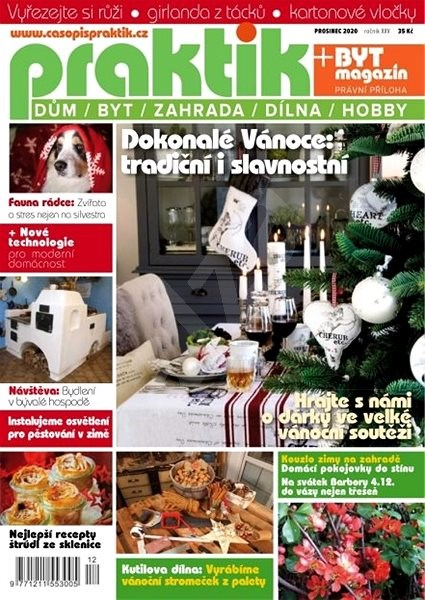 Praktik - 12/2020 - Elektronický časopis