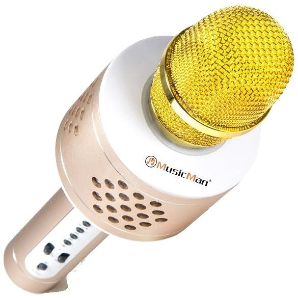Technaxx 4611 PRO karaoke BT-X35 zlatý - Mikrofon