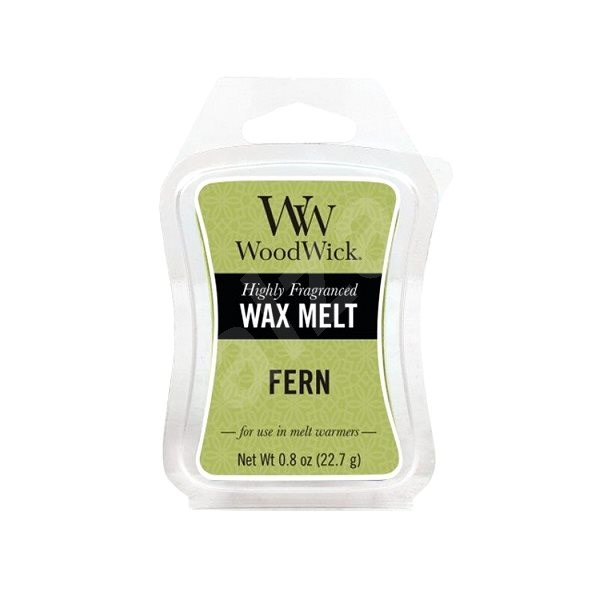 WOODWICK Fern 22.7 g - Aroma Wax