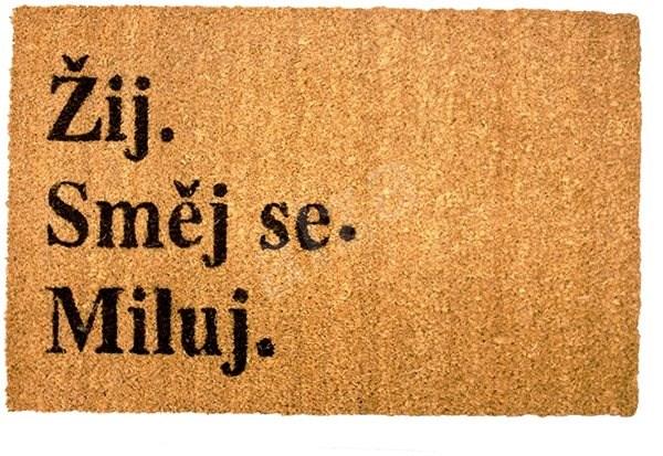 HOME ELEMENTS Rohožka s originálním textem, Žij, směj se, miluj, 40x60 cm -  Rohožka | Alza.cz