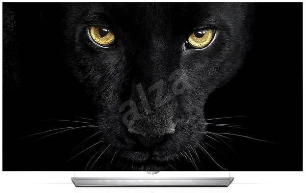"""65"""" LG 65EF9509 - Televize"""