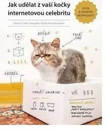 Jak udělat z vaší kočky internetovou celebritu -