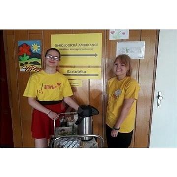 Amelie - pomoc dobrovolníků onkologicky nemocným - Charitativní projekt