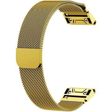 Eternico Milanese Band Steel Silver Buckle zlatý pro Garmin 20 (AET-GRQRMIL25G-20)