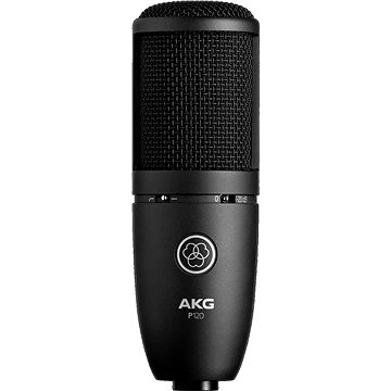 AKG Perception 120 (AKG P120)