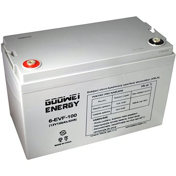 GOOWEI ENERGY 6-EVF-100, baterie 12V, 100Ah, ELECTRIC VEHICLE (6-EVF-100)