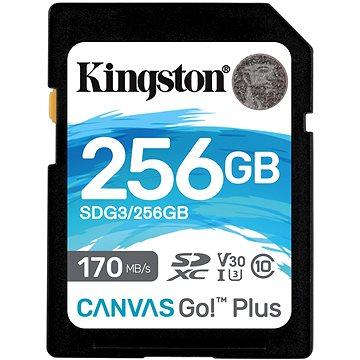 Kingston SDXC 256GB Canvas Go! Plus (SDG3/256GB)