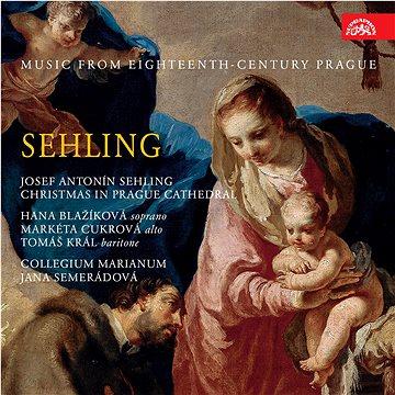 Collegium Marianum: Sehling: Hudba Prahy 18. století - CD (SU4174-2)