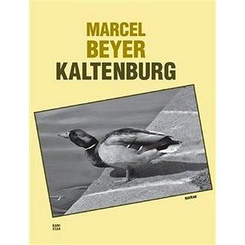 Kaltenburg: Skutečný příběh dobrých vojáků 91. regimentu (978-80-87341-42-1)