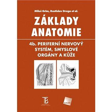 Základy anatomie: 4b. Periferní nervový systém, smyslové orgány a kůže (978-80-7492-156-8)